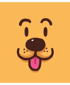 Postal perro cara